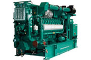 Lean-Burn Gas Generator Sets