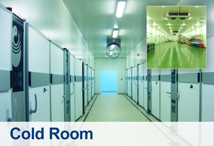 Cold Rooms Technical Supplies Amp Services Co Llc Tssc