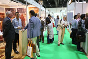 AED 7.34 Trillion Construction Activity In GCC Boosts Timber Industry