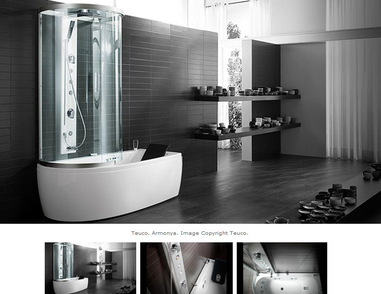 Shower and Tub Combined