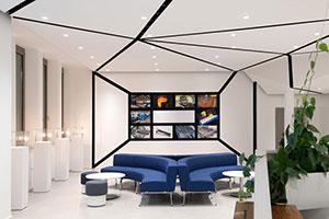 Case Study: 19 Unique Pieces - Designer Ceiling Solution