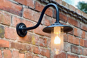 Davey Lighting Exterior Bracket Light With Swan Neck