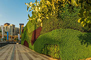 Dubai Properties Unveils Middle East's Largest Living Green Wall at Dubai Wharf