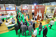 Dubai Woodshow to Feature Pavilions from 6 Different Countries