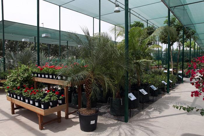 Eco-friendly development launches region'2s largest plant ...