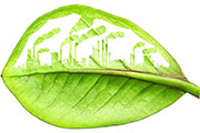 Focus on Sustainability in Construction