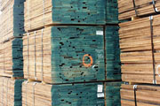 Largest stockist of premium quality hardwood