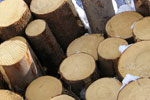 Major Life Cycle Assessment study announced for American Hardwoods.