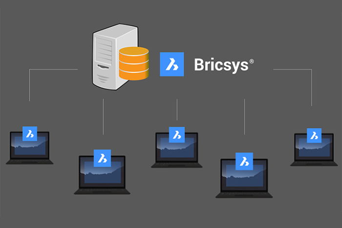 Named User Subscriptions vs. BricsCAD's Flexible Licensing
