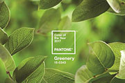 Pantone reveals 15-0343 Greenery as its 2017 Color of the Year