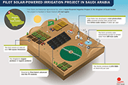 Pilot Solar-Powered Irrigation Project in Saudi Arabia