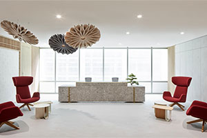 Summertown Interiors Delivers Stunning Design and Build Project for Takeda New Dubai Headquarters