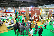 USD 2.4tn worth Expo 2020 Dubai construction projects to drive demand for wood industry