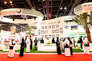 WETEX 2015: an ideal global platform for developing the energy, water, and environmental sectors